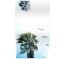 Dream-like Palm and Pelicans Flying Overhead Poster