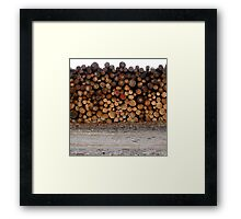 Timber on the track Framed Print