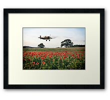 The Lone Fighter Framed Print