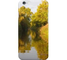 Canal dressed in gold iPhone Case/Skin