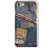 floater in the pond. iPhone Case/Skin