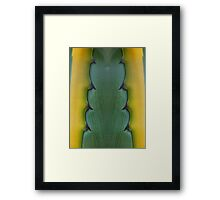 Spines Framed Print