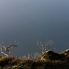 Cloudy Ridgetop by photograham