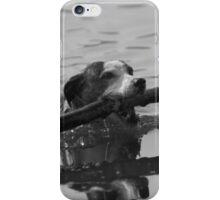 Dog playing 2 iPhone Case/Skin
