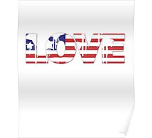 USA Love Design Poster