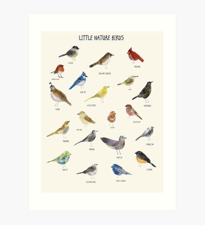 little nature birds Art Print