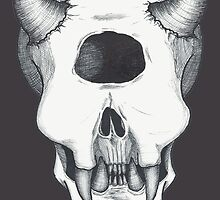 Cyclops Skull by BettyRocksteady