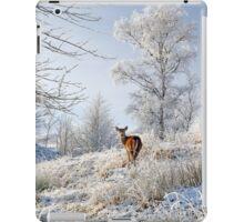 Glen Shiel Misty Winter Deer iPad Case/Skin