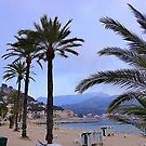 Evening Time In Port de Soller.................................Majorca by Fara