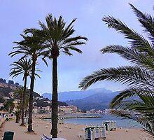 Evening Time In Port de Soller.................................Majorca by Fara