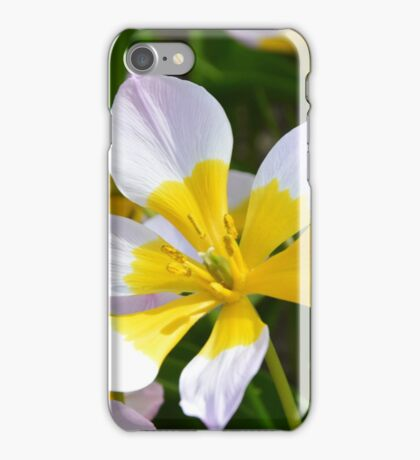 White and Yellow Daffodils iPhone Case/Skin