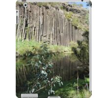 Organ Pipes iPad Case/Skin