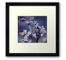 Archipelago Flowers Framed Print