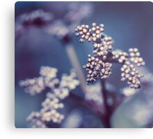 Archipelago Flowers Metal Print