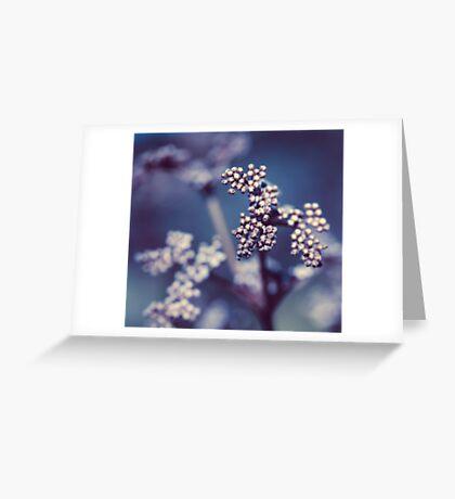 Archipelago Flowers Greeting Card