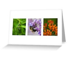 Insects in Action Greeting Card