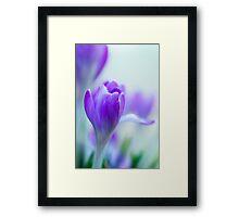 My Purple World Framed Print
