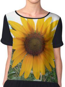 Sun Flower Chiffon Top