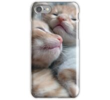 Kittens 3 iPhone Case/Skin