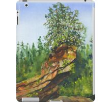 Slipper Rock iPad Case/Skin