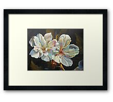 New Beginnings by Chris Brandley Framed Print