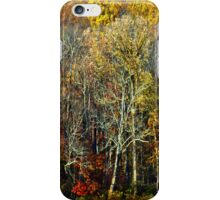 Autumn Fresco iPhone Case/Skin