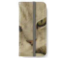 Cute British Shorthair Cat iPhone Wallet/Case/Skin