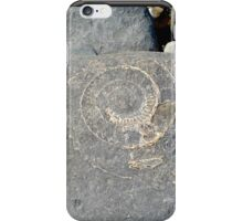 Fossil on Monmouth Beach iPhone Case/Skin