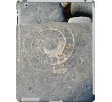 Fossil on Monmouth Beach iPad Case/Skin