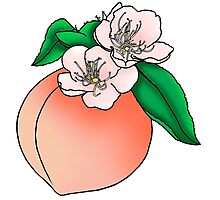 Georgia Peach Photographic Print