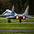 """Mikoyan MiG-29S """"Fulcrum C"""" blue 407 by Colin Smedley"""