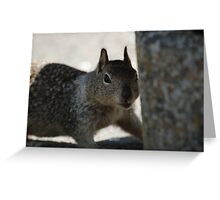 Went on Squirrel Hunt Greeting Card