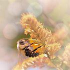 Bumble Bee by David Lamb