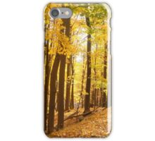 Golden Fall iPhone Case/Skin
