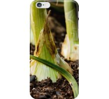 Photo of Onions in the Garden iPhone Case/Skin