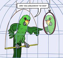Parrot Cage Fight by Thingsesque