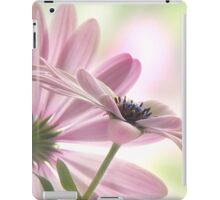Romeo & Juliet iPad Case/Skin