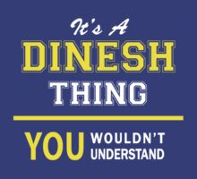 It's A DINESH thing, you wouldn't understand !! by satro