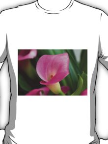 pink lily T-Shirt