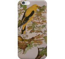 GOLDEN ORIOLES - watercolor iPhone Case/Skin