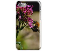 Purple & Bee iPhone Case/Skin
