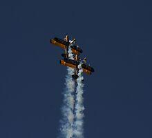 Superb synchronised flying by brummieboy
