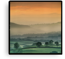 Up with the larks Canvas Print