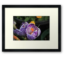 Mother Nature at Work Framed Print