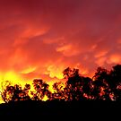 Fiery sunrise - Howrah, Tasmania by PC1134