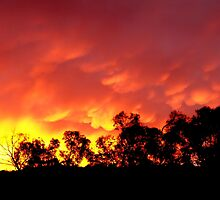 Fiery sunrise - Howrah, Tasmania by PC1134