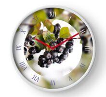 Chokeberries called aronia fruits Clock