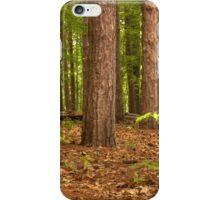 Pine Pine Pine Everywhere © iPhone Case/Skin