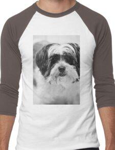 Maltese Dog Portrait Men's Baseball ¾ T-Shirt