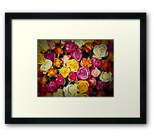 Beautiful Mixed Roses Bouquet Framed Print